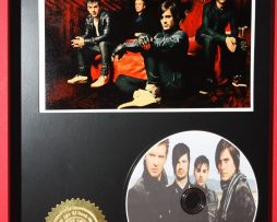 30-SECONDS-TO-MARS-LTD-EDITION-PICTURE-CD-DISC-DISPLAY-181454670740