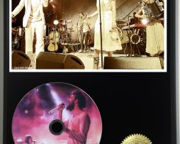 EDWARD-SHARPE-AND-THE-MAGNETIC-ZEROS-LTD-EDITION-PICTURE-CD-DISC-DISPLAY-171381245820