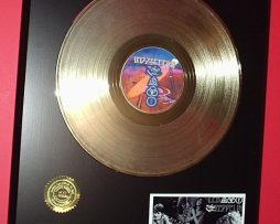 GRATEFUL-DEAD-GOLD-LP-LTD-EDITION-RECORD-DISPLAY-171368303410