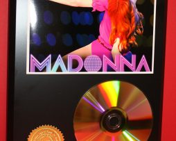 MADONNA-24kt-GOLD-CDDISC-COLLECTIBLE-RARE-AWARD-QUALITY-PLAQUE-170823338990