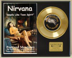 NIRVANA-LTD-EDITION-CONCERT-POSTER-SERIES-GOLD-45-DISPLAY-SHIPS-FREE-2-181235764630