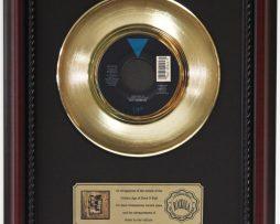 ROY-ORBISON-YOU-GOT-IT-GOLD-RECORD-FRAMED-CHERRYWOOD-DISPLAY-K1-172204412860
