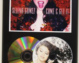 SELENA-GOMEZ-2-LTD-EDITION-PICTURE-CD-24-kt-GOLD-CD-DISPLAY-SHIPS-US-FREE-181305964280