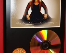 STEVIE-NICKS-24kt-GOLD-CDDISC-COLLECTIBLE-RARE-AWARD-QUALITY-PLAQUE-GIFT-170823353360