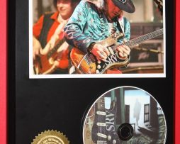 STEVIE-RAY-VAUGHAN-LIMITED-EDITION-PICTURE-CD-DIS-COLLECTIBLE-RARE-MUSIC-DISPLAY-170836247760