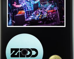 ZEDD-LTD-EDITION-PICTURE-CD-DISC-DISPLAY-171381286550