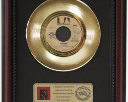 DON-MCLEAN-VINCENT-GOLD-RECORD-CUSTOM-FRAMED-CHERRYWOOD-DISPLAY-K1-172164199181