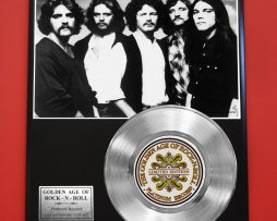 EAGLES-PLATINUM-RECORD-LTD-EDITION-RARE-COLLECTIBLE-MUSIC-GIFT-AWARD-170858081891
