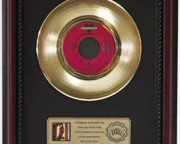 JOAN-JETT-HATE-MYSELF-FOR-LOVING-YOU-GOLD-RECORD-FRAMED-CHERRYWOOD-DISPLAY-K1-172204356921