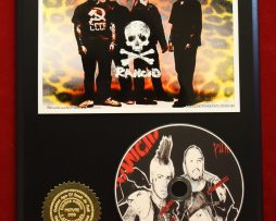 RANCID-LTD-EDITION-PICTURE-CD-DISC-COLLECTIBLE-RARE-GIFT-WALL-ART-170866029471