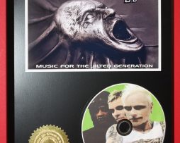 THE-PRODIGY-LIMITED-EDITION-PICTURE-CD-DISC-COLLECTIBLE-RARE-MUSIC-DISPLAY-180875462531