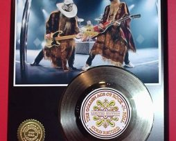 Z-Z-TOP-GOLD-45-RECORD-LIMITED-EDITION-DISPLAY-171451418911