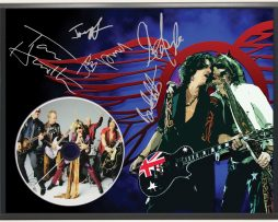 AEROSMITH-2-LTD-EDITION-SIGNATURE-SERIES-PICTURE-CD-DISPLAY-GIFT-171983058312