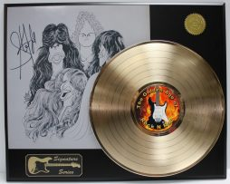 AEROSMITH-STEVEN-TYLER-GOLD-LTD-EDITION-REPRODUCTION-SIGNATURE-RECORD-DISPLAY-172047848472