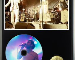 EDWARD-SHARPE-AND-THE-MAGNETIC-ZEROS-LTD-EDITION-PICTURE-CD-DISC-DISPLAY-171381246872