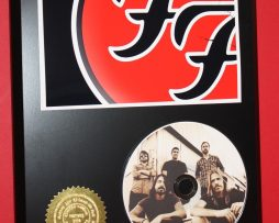 FOO-FIGHTERS-PICTURE-DISC-COLLECTIBLE-RARE-AWARD-QUALITY-PLAQUE-GIFT-180874724482