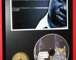 NOTORIOUS-BIG-LIMITED-EDITION-PICTURE-CD-DISC-COLLECTIBLE-RARE-MUSIC-DISPLAY-180875132372