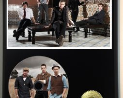 ONE-REPUBLIC-LTD-EDITION-PICTURE-CD-DISC-DISPLAY-181460574132