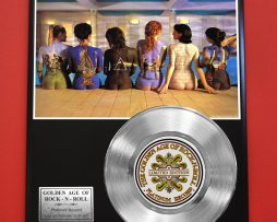 PINK-FLOYD-PLATINUM-RECORD-LTD-EDITION-RARE-COLLECTIBLE-MUSIC-GIFT-AWARD-180914447912