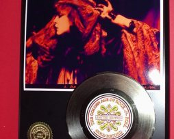 STEVIE-NICKS-GOLD-45-RECORD-LTD-EDITION-DISPLAY-AWARD-QUALITY-SHIPS-FREE-170650236622
