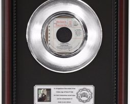 STEVIE-NICKS-I-CANT-WAIT-PLATINUM-FRAMED-RECORD-CHERRYWOOD-DISPLAY-K1-172205643912