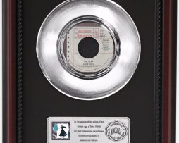 STEVIE-NICKS-TALK-TO-ME-PLATINUM-FRAMED-RECORD-CHERRYWOOD-DISPLAY-K1-172205645382