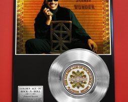 STEVIE-WONDER-PLATINUM-RECORD-EDITION-RARE-COLLECTIBLE-MUSIC-GIFT-AWARD-181578982272
