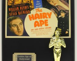 THE-HAIRY-APE-SUSAN-HAYWOOD-OSCAR-MOVIE-DISPLAY-FREE-US-SHIPPING-181202086552