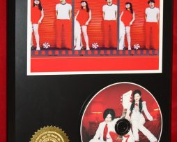 WHITE-STRIPES-LIMITED-EDITION-PICTURE-CD-DISC-COLLECTIBLE-RARE-GIFT-WALL-ART-170864095342