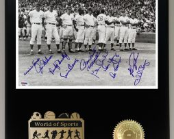1969-CHICAGO-CUBS-STARTING-LINEUP-LTD-EDITION-REPRODUCTION-SIGNATURE-DISPLAY-171943173593