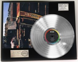 BEASTIE-BOYS-PAULS-BOUTIQUE-LTD-EDITION-PLATINUM-LP-RECORD-DISPLAY-FREE-SHIP-171386681593