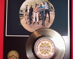 BYRDS-GOLD-45-RECORD-LIMITED-EDITION-DISPLAY-171368579403