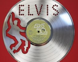 Elvis-Presley-Platinum-Laser-Etched-Limited-Edition-12-LP-Record-Wall-Display-171390770253