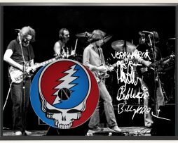 GRATEFUL-DEAD-LTD-EDITION-SIGNATURE-SERIES-PICTURE-CD-DISPLAY-GIFT-171983237083