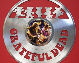 Grateful-Dead-Platinum-Laser-Cut-LTD-Edition-12-LP-Record-Wall-Display-171390772973