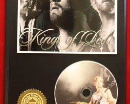 KINGS-OF-LEON-LIMITED-EDITION-PICTURE-CD-DISC-COLLECTIBLE-RARE-GIFT-WALL-ART-170866012083