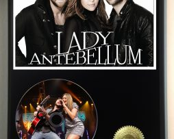 LADY-ANTEBELLUM-LTD-EDITION-PICTURE-CD-DISC-DISPLAY-181460565433