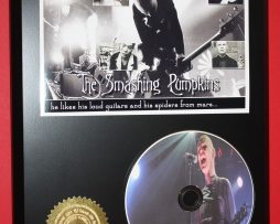 SMASHING-PUMPKINS-PICTURE-DISC-COLLECTIBLE-RARE-AWARD-QUALITY-PLAQUE-GIFT-170835485313