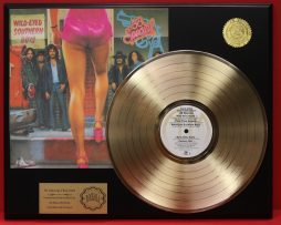 38-SPECIAL-GOLD-LP-DISPLAY-AND-PLAYS-THE-SONG-WILD-EYED-SOUTHERN-BOYS-181109207824