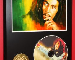 BOB-MARLEY-LIMITED-EDITION-PICTURE-CD-DISC-COLLECTIBLE-RARE-MUSIC-DISPLAY-180857556134