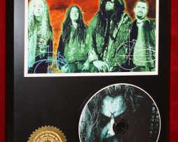 WHITE-ROB-ZOMBIE-LTD-EDITION-PICTURE-CD-DISC-COLLECTIBLE-RARE-GIFT-WALL-ART-170864096544