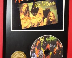 ALICE-IN-CHAINS-LIMITED-EDITION-PICTURE-CD-DISC-COLLECTIBLE-RARE-GIFT-WALL-ART-180895473875