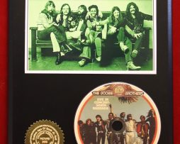DOOBIE-BROTHERS-LIMITED-EDITION-PICTURE-CD-DISC-COLLECTIBLE-RARE-GIFT-WALL-ART-170865809305