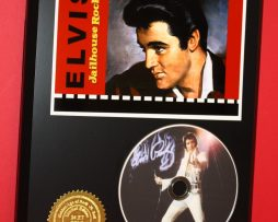 ELVIS-PRESLEY-LIMITED-EDITION-PICTURE-DISC-DISPLAY-181454691945