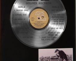 ELVIS-PRESLEY-PLATINUM-LP-RECORD-DISPLAY-ETCHED-W-GOLDEN-RECORDS-171382162055