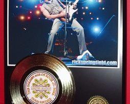 RICK-SPRINGFIELD-LTD-EDITION-GOLD-45-RECORD-DISPLAY-181454587235