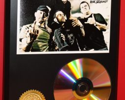 RISE-AGAINST-PUNK-24kt-GOLD-CDDISC-COLLECTIBLE-RARE-AWARD-QUALITY-PLAQUE-GIFT-180870583565