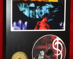 SKINNY-PUPPY-LIMITED-EDITION-PICTURE-CD-DISC-COLLECTIBLE-RARE-GIFT-WALL-ART-180911221485