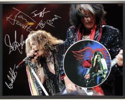 AEROSMITH-LTD-EDITION-SIGNATURE-SERIES-PICTURE-CD-DISPLAY-GIFT-181916893706