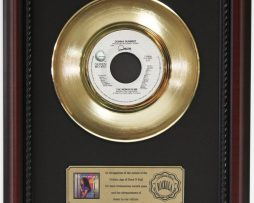 DONNA-SUMMER-THE-WOMAN-IN-ME-GOLD-RECORD-CUSTOM-FRAMED-CHERRYWOOD-DISPLAY-K1-182089306096